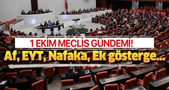 1 Ekim Meclis gündemi! Af, Nafaka, EYT, Taşeron işçi, 3600 ek gösterge ve kıdem tazminatı çıktı mı, son durum!.