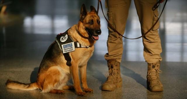 Lucy' Adnan Menderes Havalimanı'nda güvenliğin vazgeçilmez ismi oldu