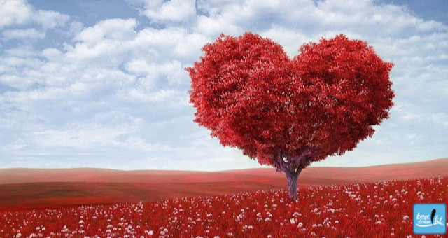 4 Şubat'ta kutlanılan sevgililer gününün tarihini hiç merak ettiniz mi