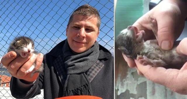 Güvenlik görevlisi, nefes alamayan kediyi kalp masajı yaparak hayat döndürdü