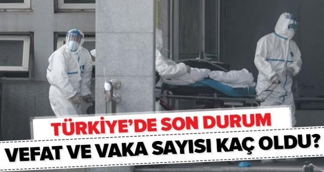 Türkiye'de Koronavirüs sayısı